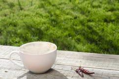 Kopp kaffe på en trätabell och chili Royaltyfri Bild