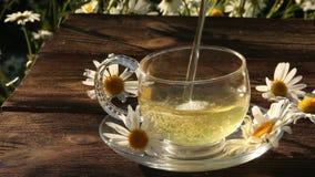 Kopp med grönt te på tabellen stock video