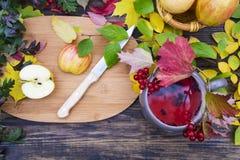 Kopp med rött te med guelder-ros bär mot backgrounen Fotografering för Bildbyråer