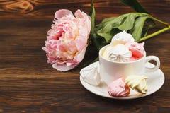 Kopp med rosa och vita marängar för ljus - Royaltyfri Bild