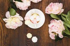 Kopp med rosa och vita marängar för ljus - Arkivfoton