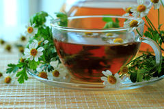 Kopp med tea Royaltyfri Fotografi