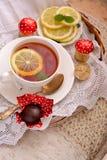 Kopp te Fotografering för Bildbyråer