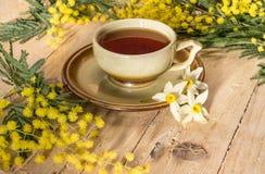 Kopp te dekorerade med en kvist av mimosan och pingstliljan Arkivfoton