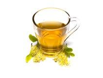 Kopp te från blommor för en lind för lind närliggande Arkivfoto