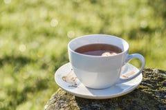 Kopp te i morgon Arkivbilder