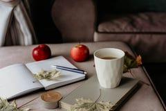 Kopp te med en bok i inre med höstbladet, noteboo fotografering för bildbyråer