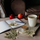 Kopp te med en bok i inre med höstbladet, noteboo arkivbild