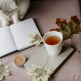 Kopp te med en bok i inre med höstbladet, noteboo arkivbilder