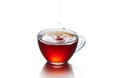 Kopp te med isolerad färgstänk royaltyfri bild