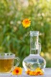 Kopp te och calendulaen blommar med en stam i en glass flaska Arkivbilder