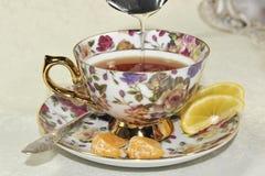 Kopp te och honung Royaltyfria Bilder