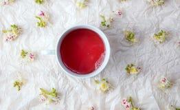 Kopp te och kastanjebruna blomningblommor Royaltyfri Bild