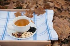 Kopp te och plattan med hasselnötter är på en servett Royaltyfri Fotografi