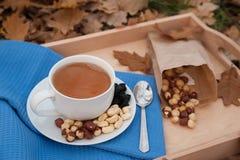 Kopp te och plattan med hasselnötter är på en servett Royaltyfri Foto