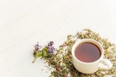Kopp te på tabellen med örter royaltyfri foto
