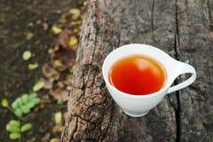 Kopp te på träbakgrund i solig morgon med kopieringsutrymme arkivbilder