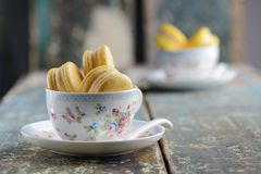 2 koppar av vaniljmakron Arkivbilder