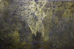 koppargreen Arkivfoto