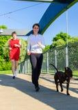 Koppel het lopen aan hond Royalty-vrije Stock Afbeeldingen