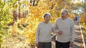 Koppelen de bejaarden het lopen onderaan de gang en het glimlachen aan elkaar in een park in een mooi de herfstmilieu stock videobeelden