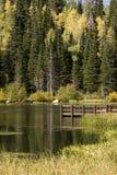 Koppeln Sie auf See im Herbst an Stockbilder