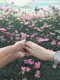 Koppelt samen de tuin Gelukkig Valentine van de Achtergrondkosmosbloem Stock Fotografie