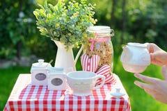 Koppen av smakligt te tjänade som i trädgården Arkivfoton
