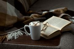 Koppen av varmt kaffe med marmeladboken pekar filten på soffan Fotografering för Bildbyråer