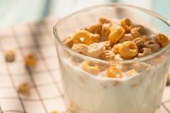 Koppen för sidosikten av mjölkar med sädes- cirklar i en solig morgon som den sunda frukosten Royaltyfri Fotografi