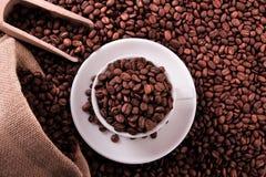Koppen för vitt kaffe med bönor plundrar och kammar hem bästa sikt Royaltyfri Fotografi