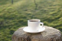 Koppen kaffe på ett trä och en backgroud är från grön färg royaltyfria bilder