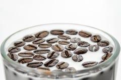 Koppen mycket av mjölkar och kaffebönor royaltyfri fotografi