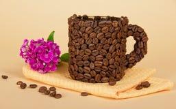 Koppen som göras från kaffekorn, ljusa nejlikor royaltyfri fotografi