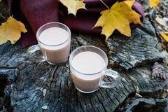 Koppen van cacao op natuurlijke houten achtergrond met de herfstbladeren mil stock foto's