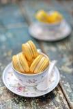 2 koppen vanillemakarons Stock Foto