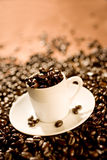 koppespresso Royaltyfri Fotografi