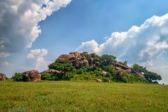 Koppie rock in savannah Stock Photography