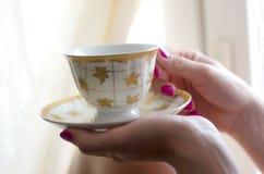 koppkvinnlign hands sauceren Royaltyfri Fotografi
