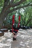 Koppla av för akrobat för kvinnlig flyg- Arkivbild