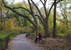 koppla av för Central Park folk royaltyfri bild