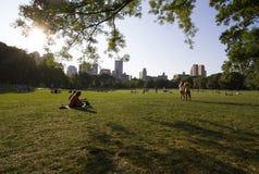 koppla av för Central Park folk arkivbild