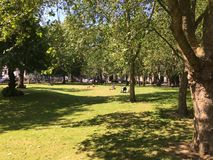 koppla av för park Royaltyfri Foto