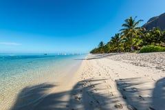 Koppla av ferier i tropiskt paradis Mauritius ö Royaltyfri Fotografi