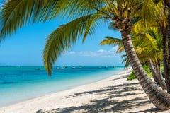 Koppla av ferier i tropiskt paradis Mauritius ö Royaltyfria Foton