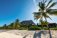 Koppla av ferier i tropiskt paradis Mauritius ö Arkivfoto