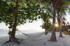 Koppla av i hängmatta på stranden Fotografering för Bildbyråer