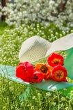 Koppla av i trädgården i en vårdag Arkivbilder