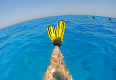 Koppla av i vattnet Arkivfoton