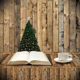 Koppla av med boken i juldag Arkivfoton